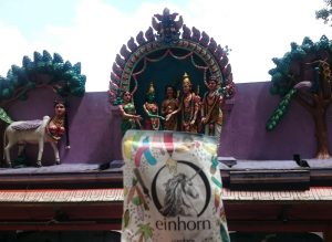 Hindu and einhorn