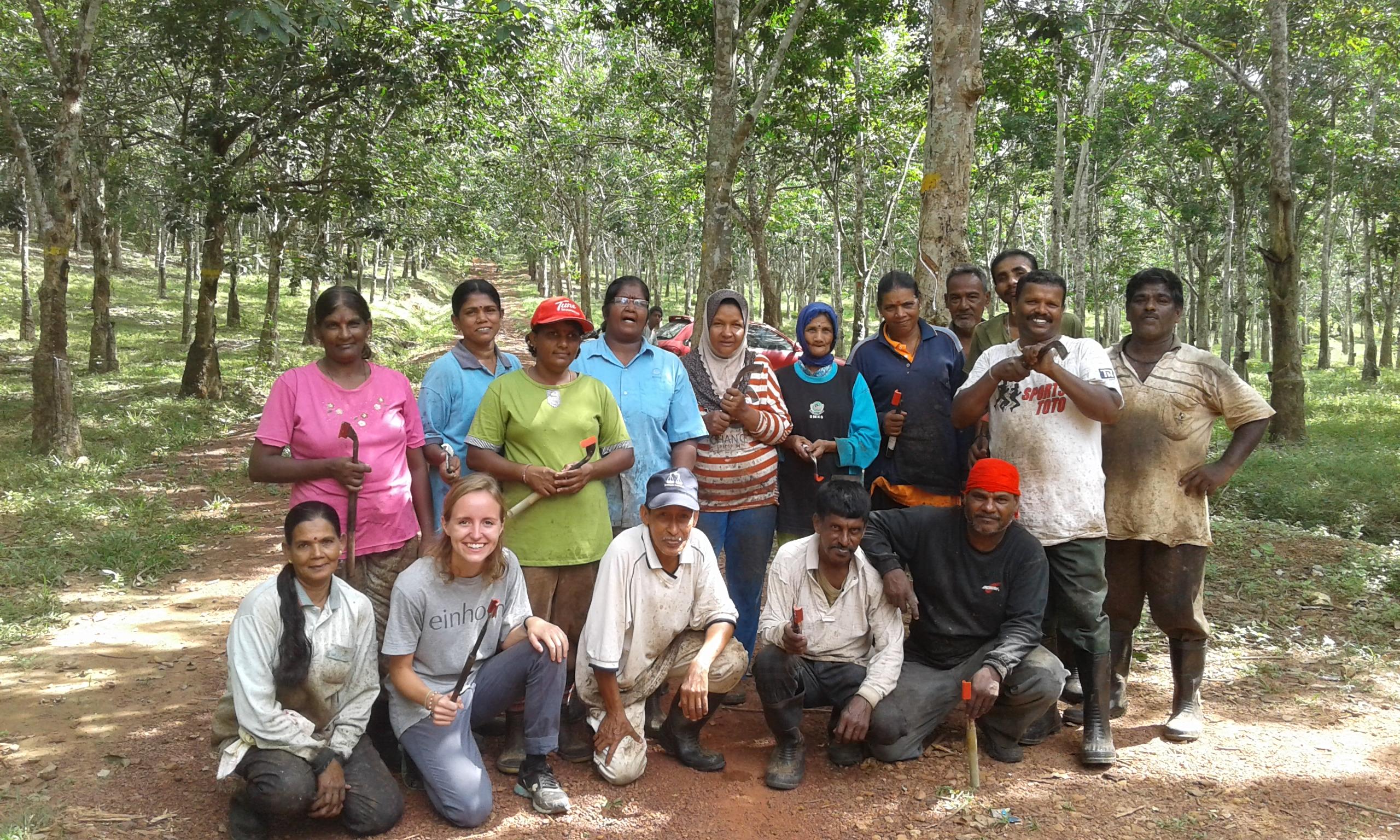 Die Plantagenarbeiter
