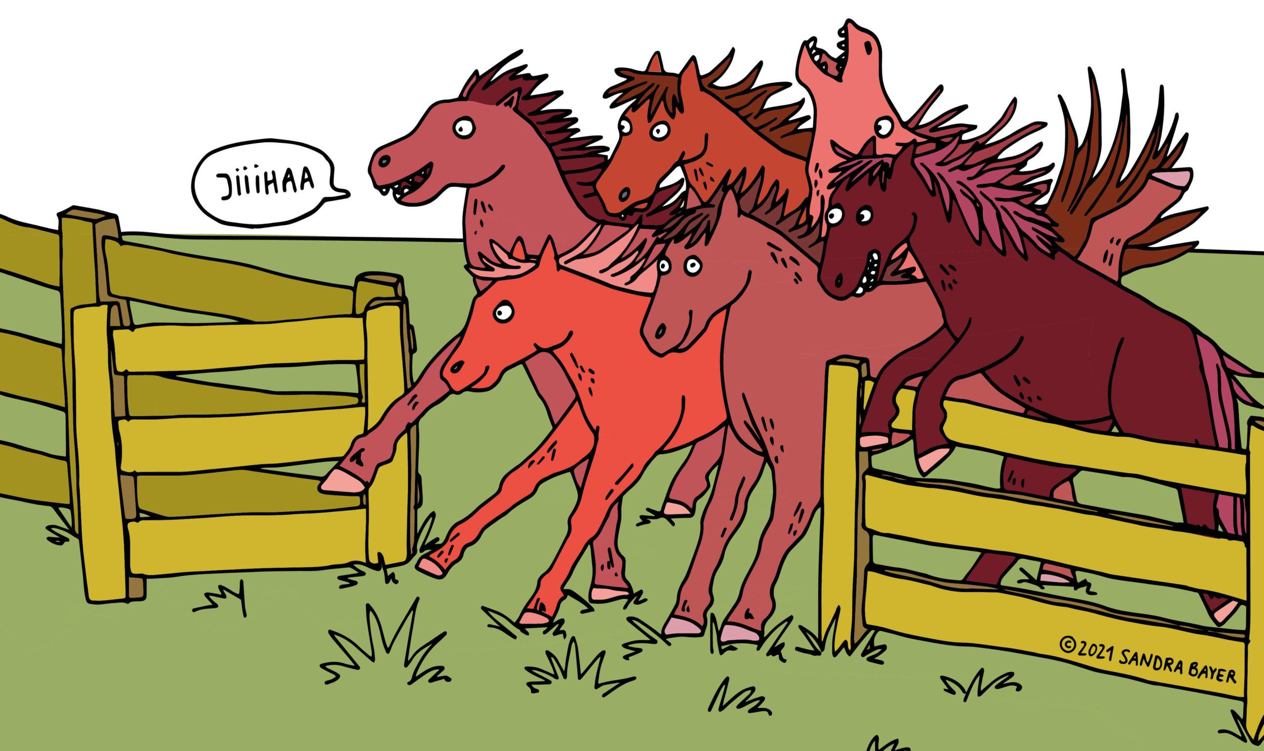 Illustrierte Pferde am Holzzaun von Sandra Bayer